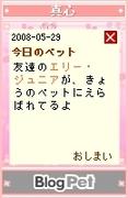 20080529_12