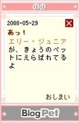 20080529_5