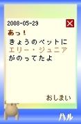 20080529_6