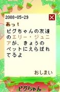 20080529_7