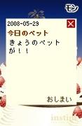 20080529_9