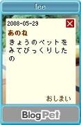 20080529lee_2